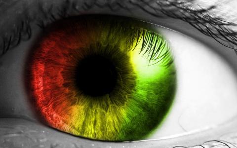 多彩多姿的眼睛