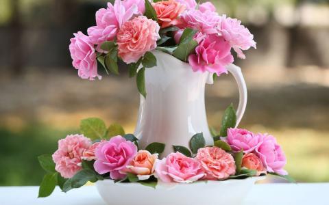 玫瑰的花瓶