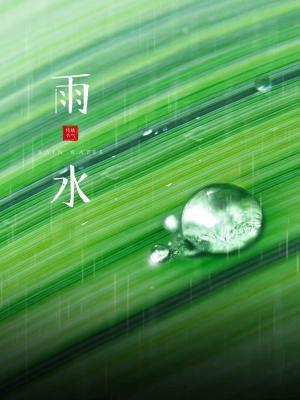 传统节气雨水清新图片