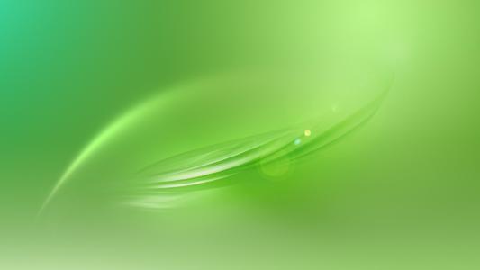 绿色半透明的叶子