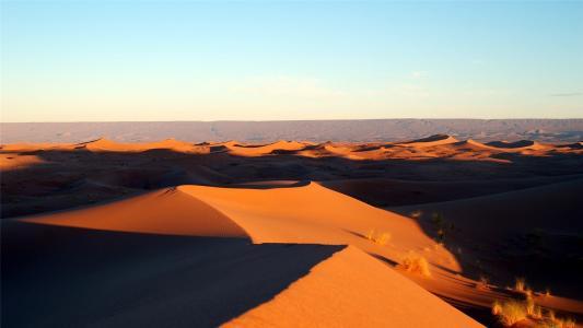 干旱缺水的沙漠