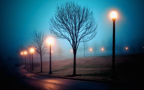 在公园里的夜色苍凉