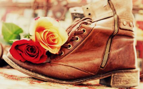 玫瑰花蕾在棕色的引导