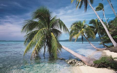 异国情调的岛屿
