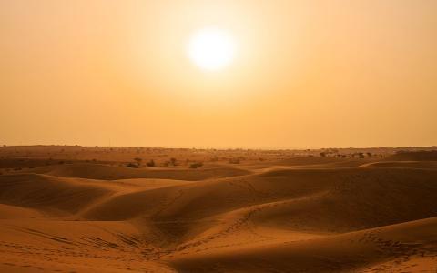干旱的沙漠