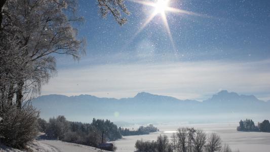 阳光明媚的雪地上