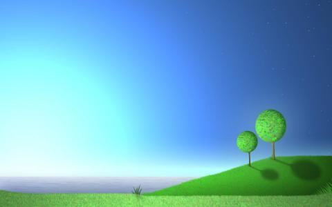 在海边的树木